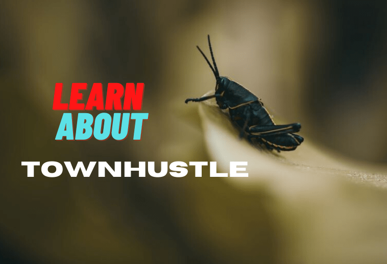 About TownHustle